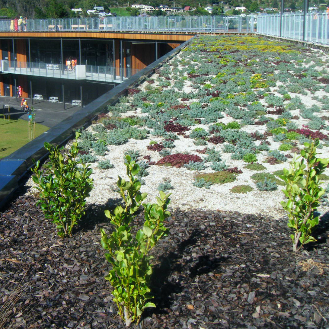 Remarkables School - Insulated Green Roof